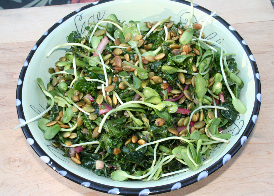 Upstarts Organic Seedlings » Kale Salad with Sunflower Sprouts and ...